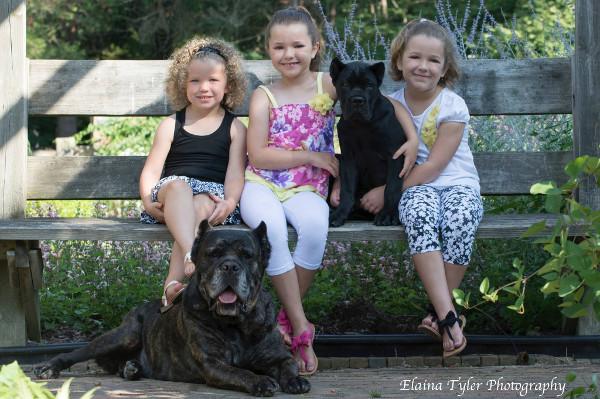 Cane Corso and kids - SerafinaCaneCorso.com